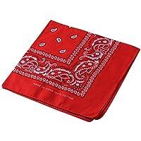 Pañuelo para la cabeza multifuncional estilo retro con estampado de cachemira; también se puede usar como diadema, velo, máscara para montar en bicicleta., hombre mujer, rojo