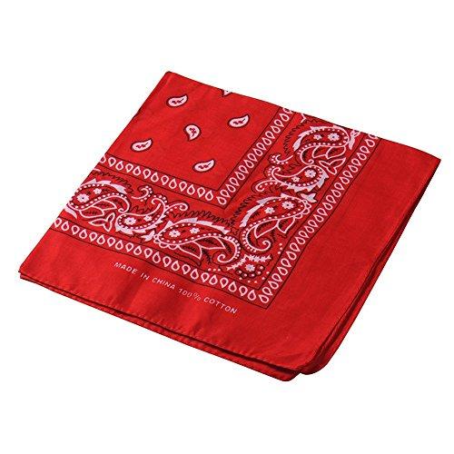 Multi funcional Retro Paisley pañuelo para la cabeza diadema velo Headwear máscara para ciclismo bicicleta riding, mujer hombre, rojo