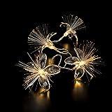 LED Batterie Lichterkette Lucy mit Blüten 10 Lichter warm weiß Indoor