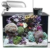 Aquatic Nature COCOON 7 - 45 x 30 x 32 cm - 43,2 L