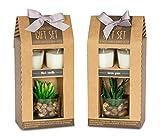 levandeo 2 Stück Geschenkbox Duftkerze Vanille Lemongras Düfte Kerzen Sukkulente Dekoration Geschenkset