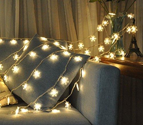 Salcar LED stringa di 6 metri 10 fiocchi di neve, IP44 impermeabile, bassa tensione 31V, per le feste di Natale Decorare Party (bianco caldo)