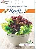 Best Lettuces - Lettuce Iceberg Improved Quality Seeds by Kraft Seeds Review