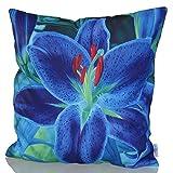 Sunburst Outdoor Living 60cm x 60cm BLUE LILY Federa decorativa per cuscini per divano, letto, sofà o da esterni - Solo federa, no interno