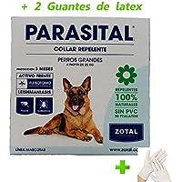 Kanxeto Zotal Parasital Collar para Perros Grandes- 72 cm + (2 Guantes de Látex) Anti pulgas, garrapatas, ácaros, Repelente Natural 100%
