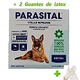 Zotal Parasital collana per cani grandes- 72 cm + 2 guanti in lattice, anti pulci, zecche, acari, Repellente Naturale 100%