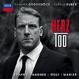 Herz-Tod [Import allemand]