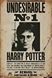 Harry Potter - Undesirable No 1 - Fantasy Filme Kino Poster Plakat Druck - Grösse 61x91,5cm