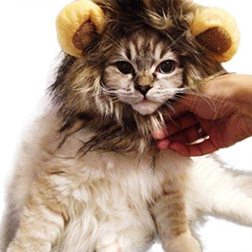 Löwe Cosplay Perücke Löwen-Kostüm Katze Hut Neuheit Löwenmähne Kopfbedeckung mit Ohren für Karneval, Halloween, Partys, Feste Haustier Spielzeug Zubehör für Kleine Hunde Welpen (Mix)