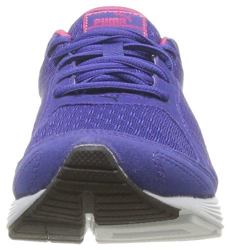 Puma - Descendant V1.5 Wn's, Scarpe da corsa Donna Violett (spectrum blue-beetroot purple 05)