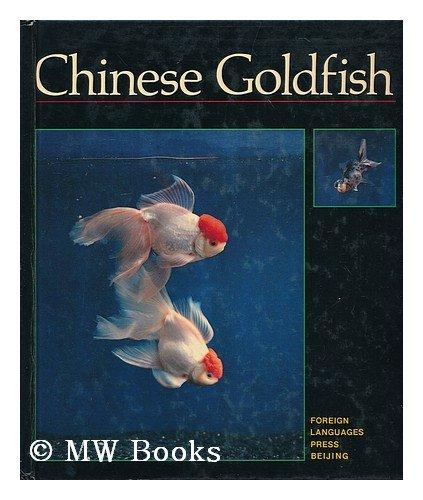 chinese-goldfish
