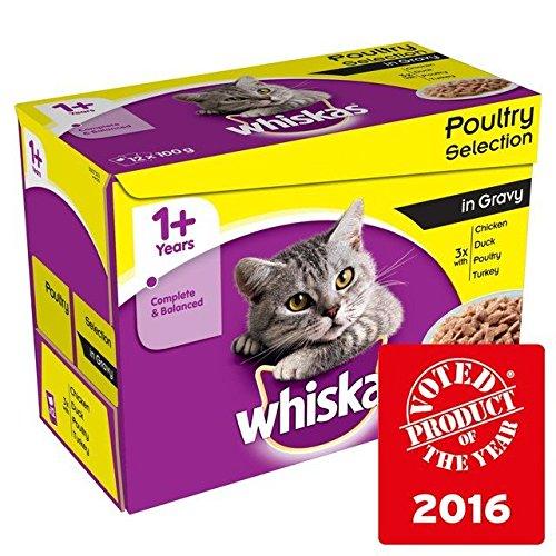 Whiskas 1+ Bustine di gatto della Pollame in salsa 12x 100g (Confezione da 6)