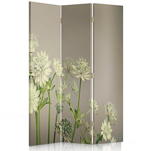 Dekorative Paravents (Feeby Frames. Raumteiler, Gedruckten auf Canvas, Leinwand Wandschirme, dekorative Trennwand, Paravent einseitig, 3 teilig (110x180 cm), Blumen, GRÜN, WEIß)