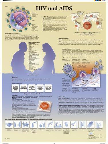 3B Scientific Lehrtafel - HIV und AIDS