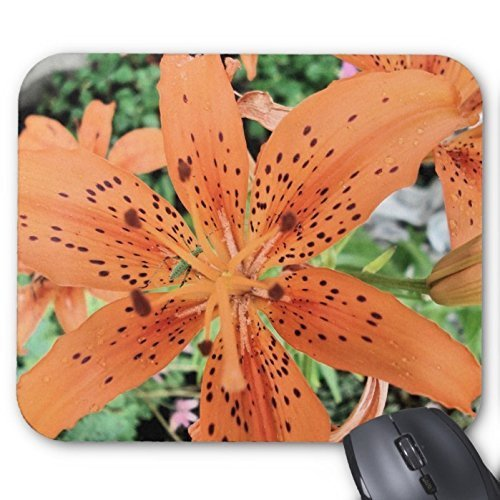 tiger-lily-in-full-bloom-mouse-pad-personalizzato-mouse-pad-tigre-mousepad-tappetini-antiscivolo