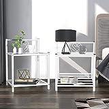 Aingoo Beistelltisch Nachtkommode Nachttisch 2er Set mit Metallrahmen Ablageboden für Wohnzimmer, Schlafzimmer, Balkon Weiß