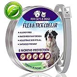 Aiviel floh - und tick Kragen für Hunde, Katzen, schädlingsbekämpfung Kragen, 8 Monate Schutz, einstellbar.