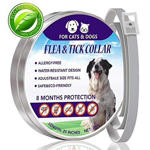 Aiviel floh - und tick Kragen für Hunde, Katzen, schädlingsbekämpfung Kragen, 8 Monate Schutz, einstellbar. -