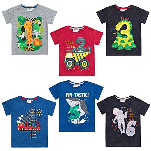 Hoolaroo Boys Birthday T-Shirt Age 1st 2nd 3rd 4th 5th 6th