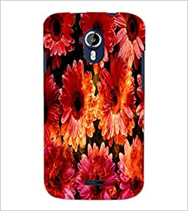 PrintDhaba Flowers D-2819 Back Case Cover for MICROMAX A116 CANVAS HD (Multi-Coloured)