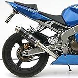 Auspuff Mivv GP Kawasaki ZX-6R 03-04 Carbon