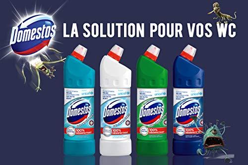 Domestos Gel Nettoyant Wc Javel 100% Désinfectant Fraîcheur Alpine 1l (Lot de 3)