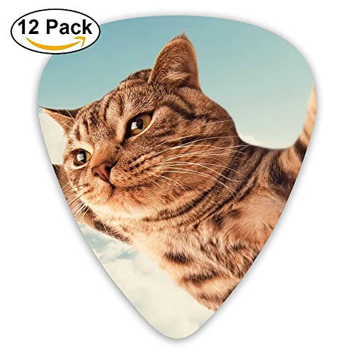 Classic Guitar Pick (12 Pack) Cat I Believe I Can Fly Player's Pack For Electric Guitar,Acoustic Guitar,Mandolin,Guitar Bass -