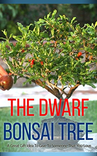 The Dwarf Bonsai Tree: A Great Gift Idea to Give to Someone That You Love