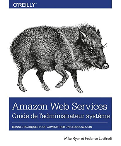 Amazon Web Service Guide de l'administrateur - Les bonnes pratiques pour administrer le cloud d'Amazon - collection O'Reilly (French Edition)