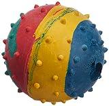 Choostix Dog Hard Ball, Medium (1 Piece)