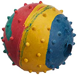 Choostix Dog Hard Ball, Medium (1 Piece)