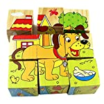 Whiie891203 Puzzle IQ Game Educational Toys,Cartoon 3D Animal Pattern Wooden Cubes Blocks Children Learning Toy Birthday Choice