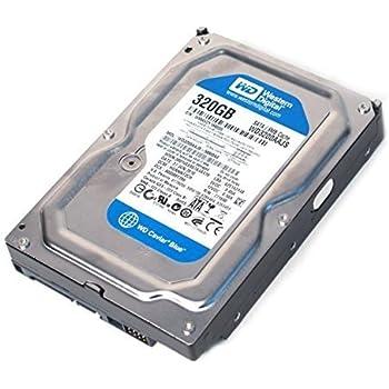 Western Digital Caviar Blue - Disco rigido interno SATA II, 7200rpm, cache 8MB, per PC, Mac, CCTV DVR, NAS, RAID 320 GB