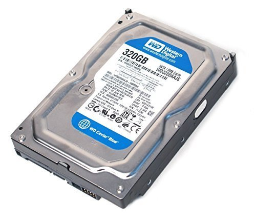 Western Digital (WD) WD3200AAJS Caviar Blue SATA II 7200 RPM 8 MB Cache Bulk/OEM Desktop Hard Drive for PC, Mac, CCTV DVR, NAS, RAID- 1 Year Warranty (320GB), [Importado de UK]