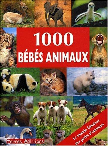 1000 Bebes Animaux par Collectif
