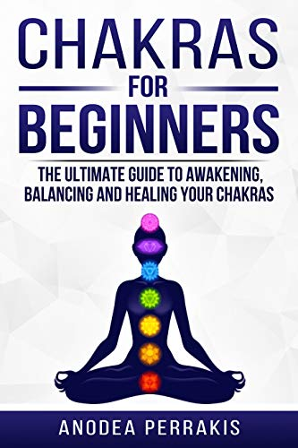 Chakras for Beginners: Why You NEED To Understand Chakras ...