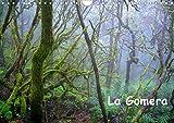 La Gomera (Wandkalender 2020 DIN A4 quer): Traumhafte Landschaften, geheimnisvolle Urwälder und unberührte Natur - das ist die Insel La Gomera. (Monatskalender, 14 Seiten ) (CALVENDO Orte) -