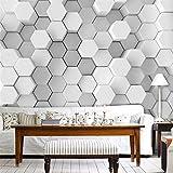 Pbldb Stereoscopic Fototapete Der Persönlichkeit 3D Moderne Hauptdekor-Weißes Und Schwarzes Gitterwand-Wohnzimmer-Sofa-Hintergrund-250X175Cm