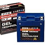 Panther Motorradbatterie Gel 12V 12Ah 51422 GT14B-4