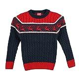 Lilliput Boys Sweaters (8907264047005_Bl...
