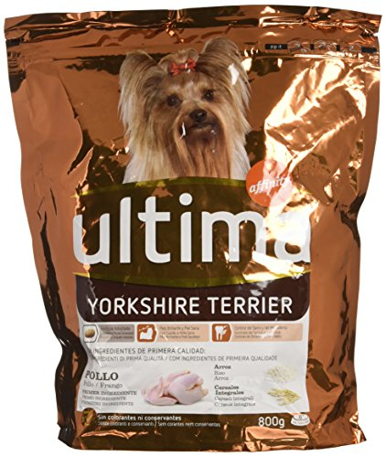 Ultima Dog Mini York Shire Gr.800