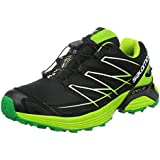 Salomon Wings Flyte GTX Herren Traillaufschuhe