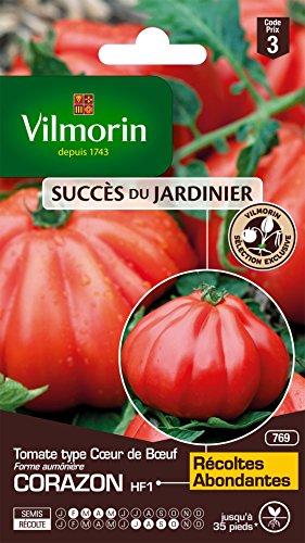 Vilmorin 3977843 Tomate cœur de bœuf, Rouge, 90 x 2 x 140 cm