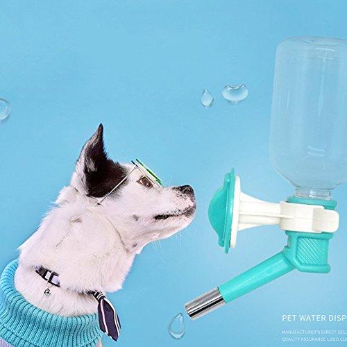 Hemore - Botella dispensadora de Agua para Mascotas para Jaula o caseta con Boquilla para Mascotas (1 Unidad), Color Rosa