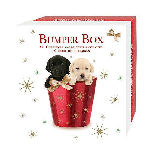 Quayside Cards Mixed Dog - Christmas Card Bumper Box