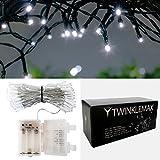 Frostfire Twinkelmax - Batteriebetriebene wasserdichte 100 LED Lichterkette