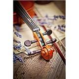 Impresión en metacrilato 20 x 30 cm: Strings on a violin de Colourbox