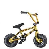 AnaellePandamoto Mini Vélo BMX Freestyle avec 3 Pièces Manivelle de 10 Pouce, Selle avec Hauteur Réglable pour Adulte, Taille: 79*73*69cm, Poids: 11kg (Or)