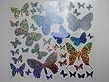 Bügelbild, Motiv: Schmetterlinge, Farbe: silber-regenbogen, heißsiegelfähige Flexfolie