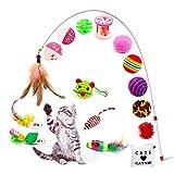 Amasawa Gatto Giocattolo,Gatto Interattivo Giocattolo per Gatti Includere Giocattolo per Gatti Mouse Balls Piume Pesce ECC,Set di Giocattoli per Gatti,Gattino Gioco al Coperto(16 Pezzi)
